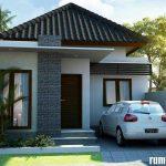 Rumah Minimalis Type 45 Terbaru 2019