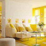 Warna Cat Ruangan Rumah Sederhana
