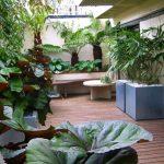 Gambar Taman Rumah Depan Minimalis