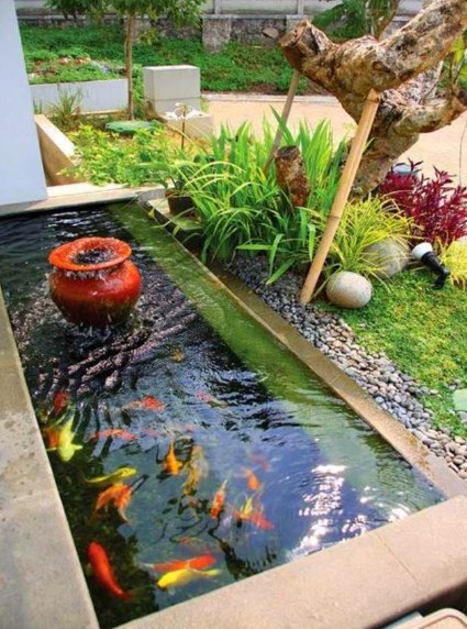 Rumah Minimalis Dengan Taman Dan Kolam Ikan