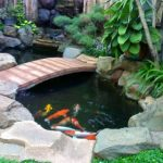 Taman Minimalis Dengan Kolam Terbaru 2019