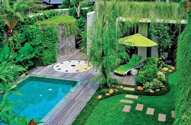 Kolam Renang Dan Taman Minimalis
