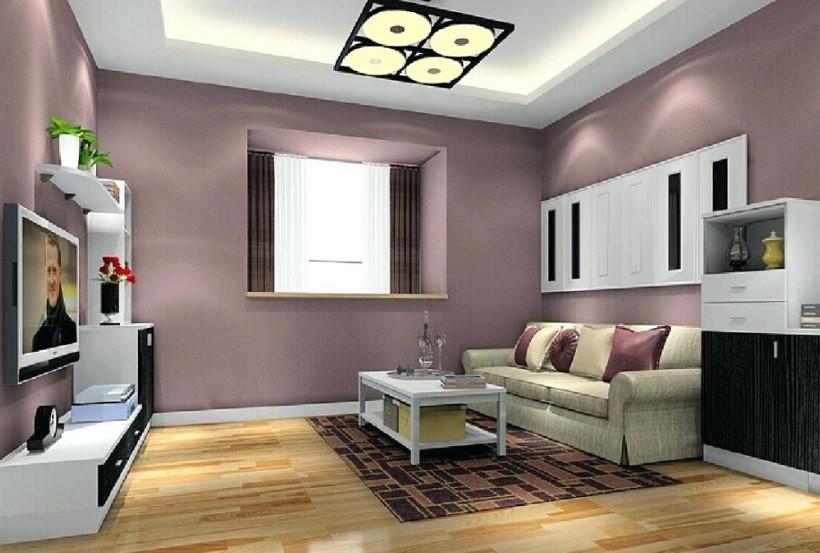 Kombinasi Warna Cat Untuk Ruang Tamu Minimalis