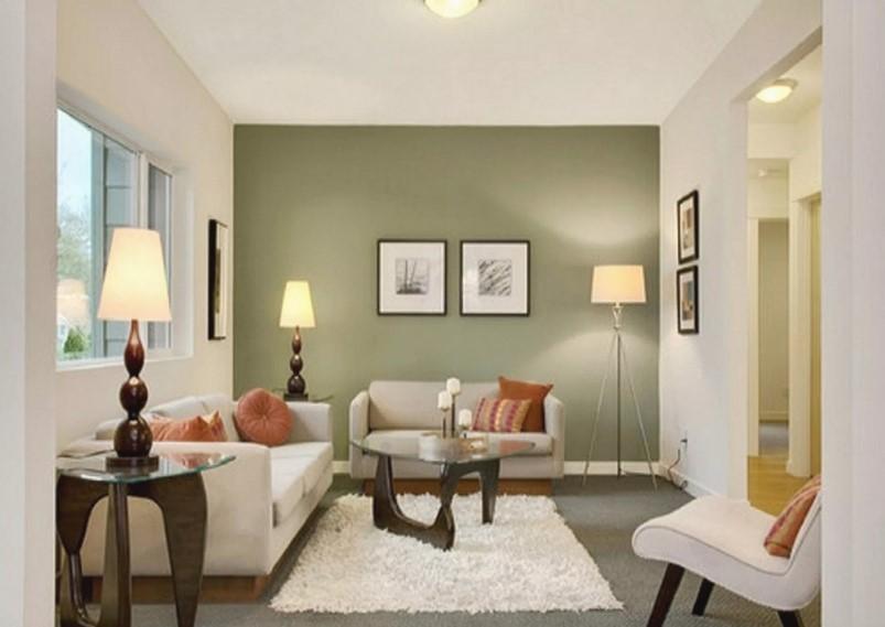 Cat Ruang Tamu Minimalis Warna Olive