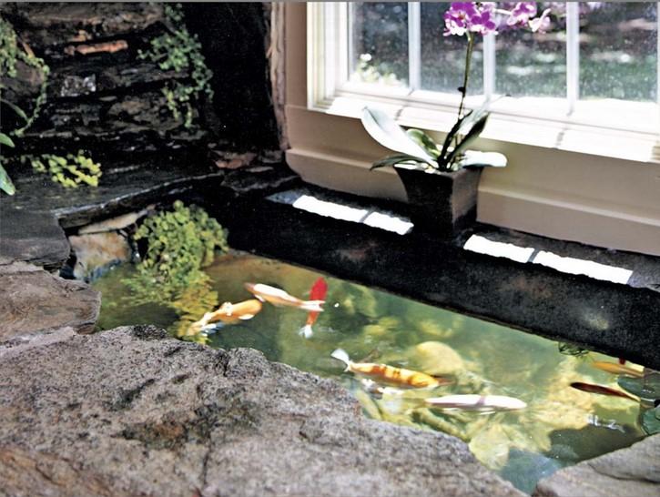 Contoh Desain Kolam Ikan Dalam Rumah
