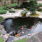 Contoh Desain Kolam Ikan Di Taman
