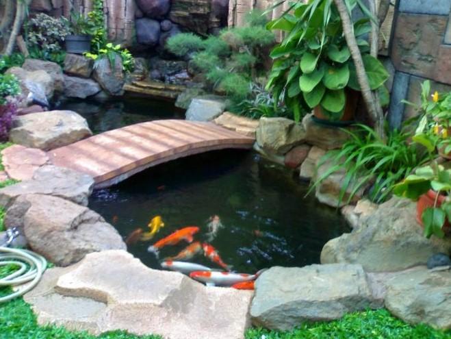 Desain Kolam Ikan Batu Alam