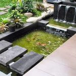 Desain Kolam Ikan Belakang Rumah Minimalis