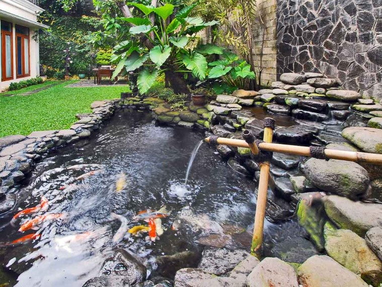 Desain Kolam Ikan Depan Rumah Dengan Dekorasi Natural