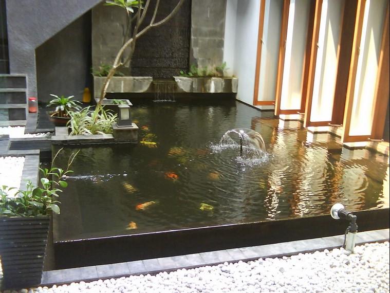 Desain Kolam Ikan Di Rumah