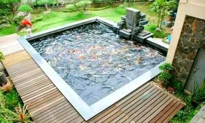 Desain Kolam Ikan Mini