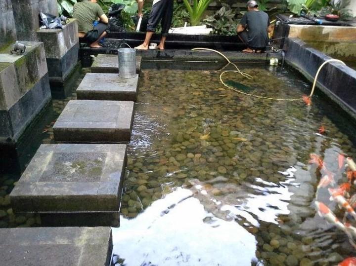 Desain Kolam Ikan Rumah Type 36
