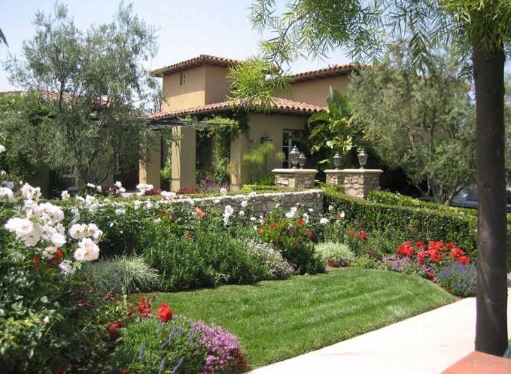 Desain Taman Belakang Rumah Minimalis Sederhana