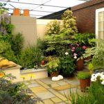 Gambar Taman Belakang Rumah Sederhana