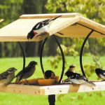 Dekorasi Taman Berupa Bird Feeder