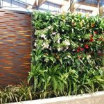 Dekorasi Taman Vertikal yang Hemat Ruang