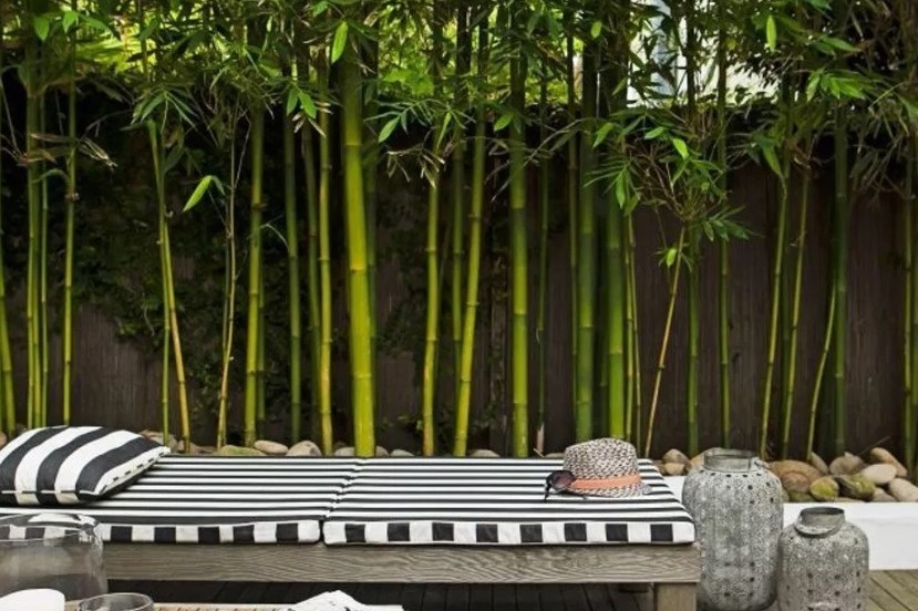 Kesan Artistik dengan Dekorasi Bambu