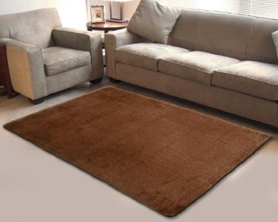 Karpet Lantai Bulu Minimalis