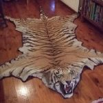 Karpet Permadani Gambar Hewan
