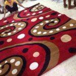karpet paradise permadani minimalis