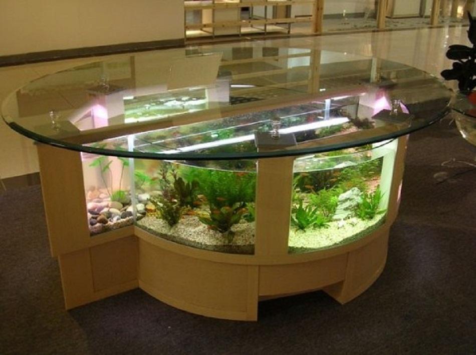 Meja aquarium minimalis bentuk bulat