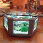 Meja aquarium minimalis bentuk segi enam