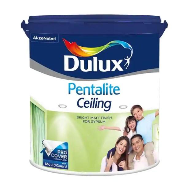 Cat Dulux Pentalite Ceiling