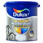Cat Dulux Weathershield Power Flexx